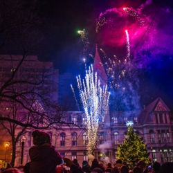 Fireworks with tree in front of city hall